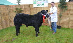 tullamore-show-11-th-aug-2019-098