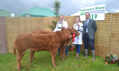 tullamore-show-11-th-aug-2019-116
