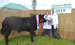 tullamore-show-11-th-aug-2019-133