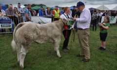 tullamore-show-2018-12-th-aug-126-large-