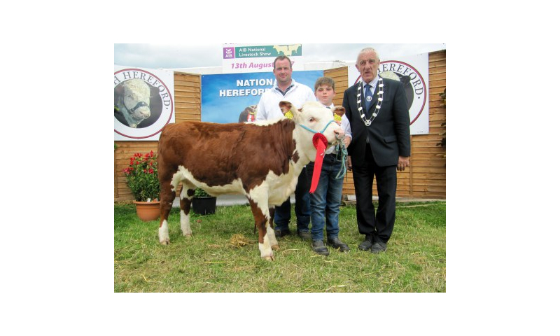 100-champion-heifer-calf-coisceim-poll-1-jewel-with-owner-timmy-breen-john-angland-and-ihbs-president-pat-mccarthy.jpg