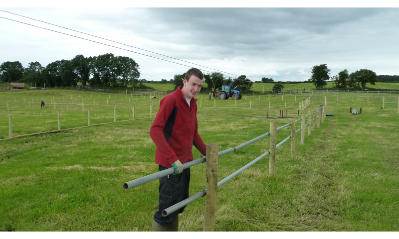 putting-up-fence-1