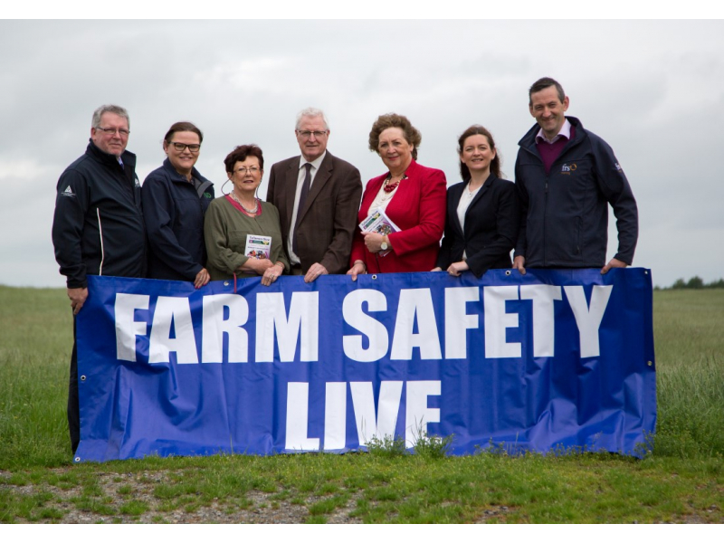 frs-and-hsa-live-farm-safety-demos-at-the-tullamore-show-2017-medium-1