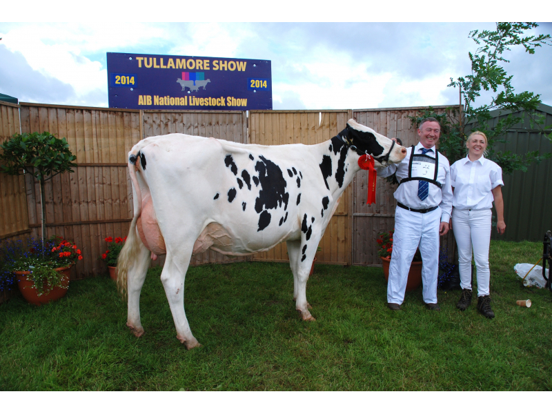 tullamore-show-2014-1-078-dairy-winners-smiling